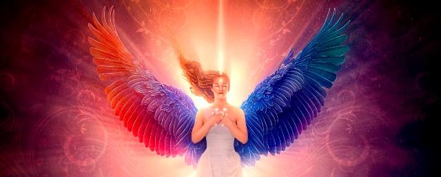 angel_eft_light_life_learning